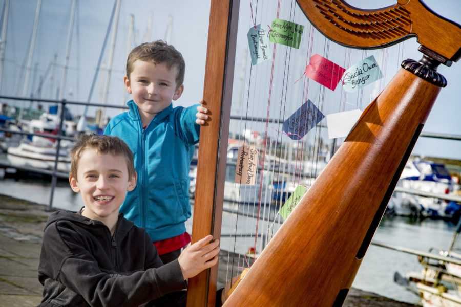 Sponsor a String appeal will be prelude to success for talented harpists of the future